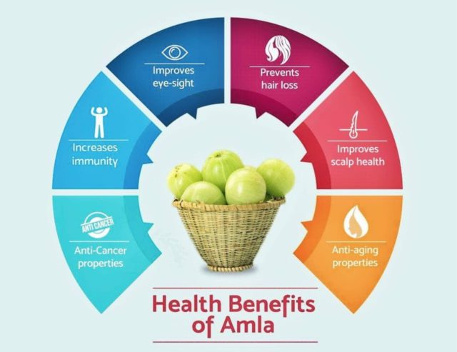 ADD AMLA IN YOUR DAILY DIET