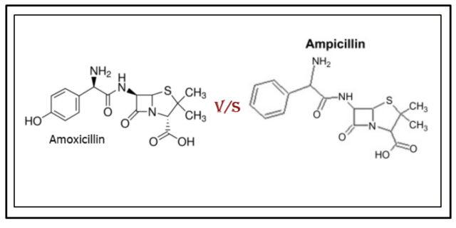 Amoxicillin & Ampicillin chemical structure