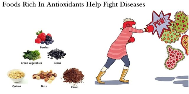 Role of Antioxidants in Fighting Diseases