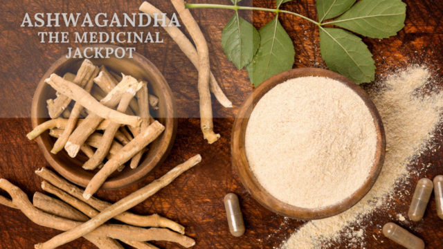 Overview on Ashwagandha by Anzen Exports