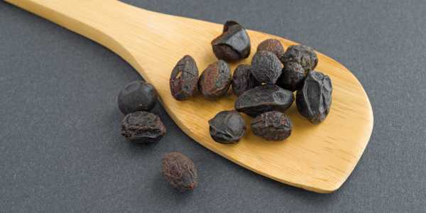 Saw Palmetto – A 200 year old Herbal Medicine