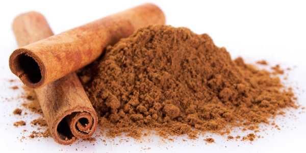 Potency of Cinnamon Bark Extract
